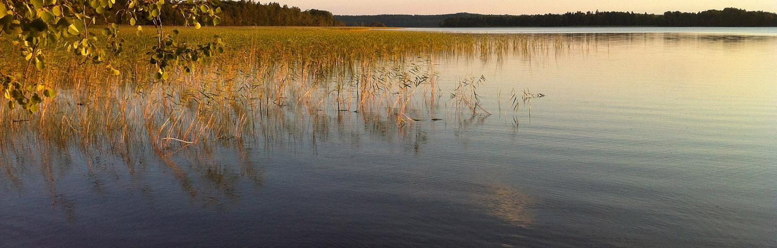 Sjön Lilla Bellen i Bellö.